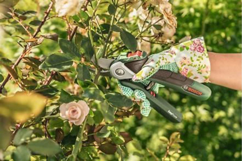 Снимка на Акумулаторна ножица EasyPrune 3,6V